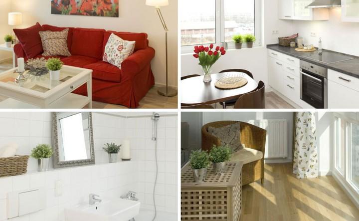 Living room, kitchen, bathroom, winter garden